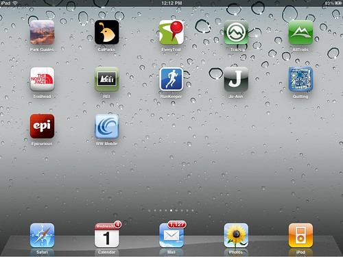 IPad 2 Screen 4