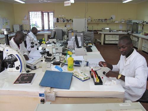 ILRI-Welcome lab in Busia, Kenya