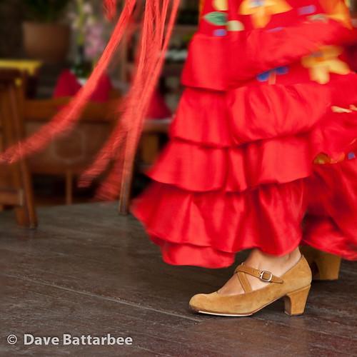 Flamenco Feet 1