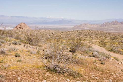 Southwest of Ridgecrest