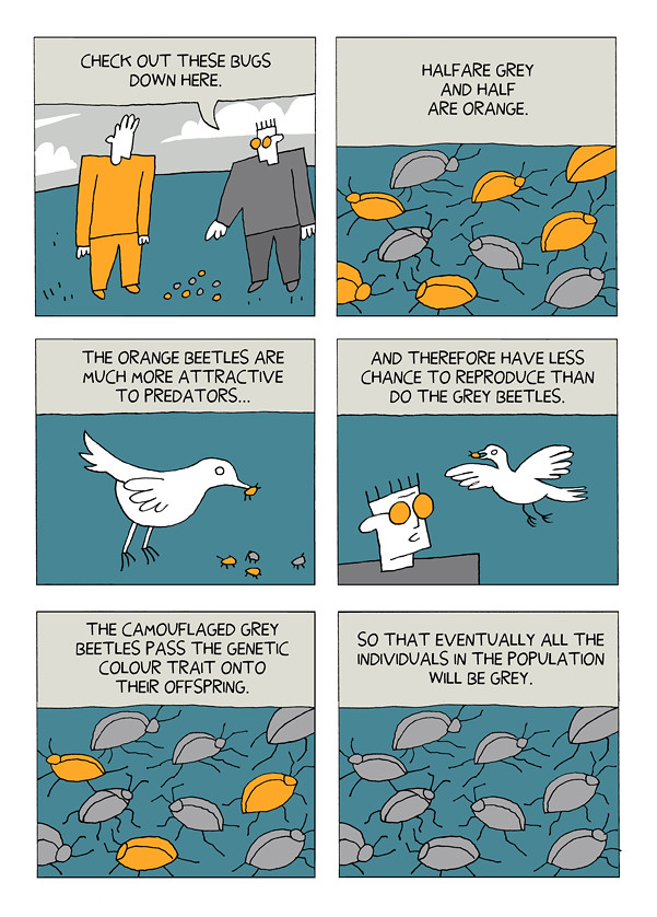 Daryl Cunningham's Cartoon Guide to Evolution