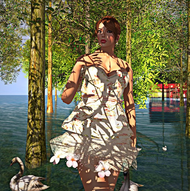 69 hair ,Lara Hurley skin,eyes from Fashism and dress from Chic Limited
