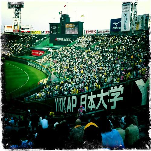 Koshien crowd