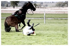 Horse and Jockey Tumble