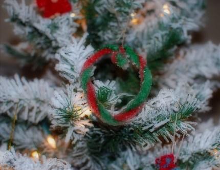 Borax Crystal Ornaments for Christmas