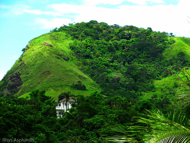 Brazil: Muriqui Hills