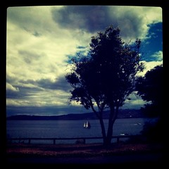 Made it to Taupo!