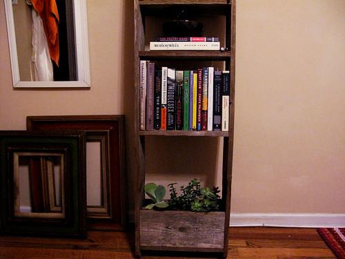jackies shelf