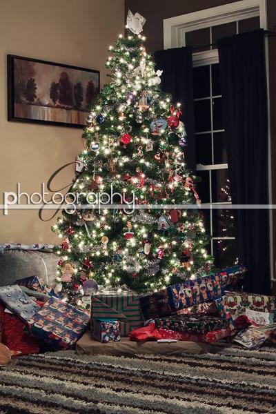 Dec242010_0131 copy