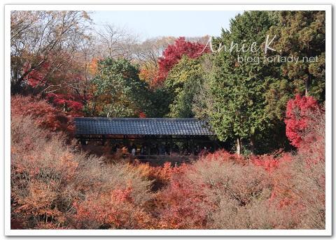 京都_東福寺5