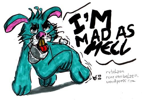 mad rabbit-20101215