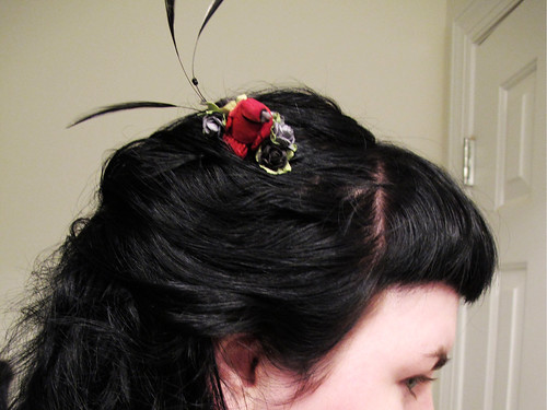 Red cardinal - in hair