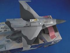 DSCN0023 (Large)