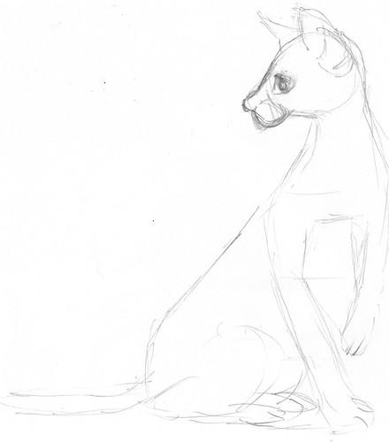 Pencilcast 2011-01-19 - Siamese cat # 1