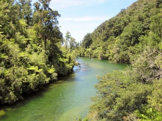 Abel Tasman River Hike