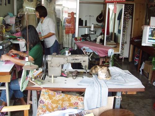 201102230035_tailor-shop-cat