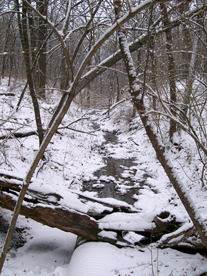 20110226_hiking1