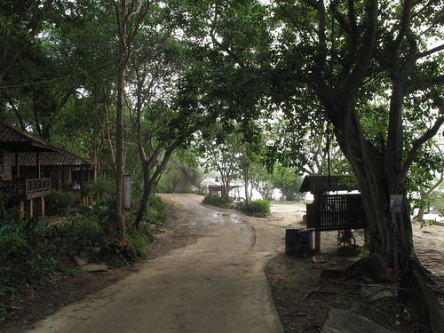 Tropical Roads in Samet