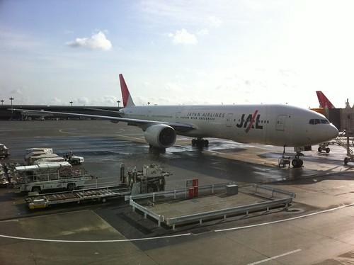 今日乗る飛行機