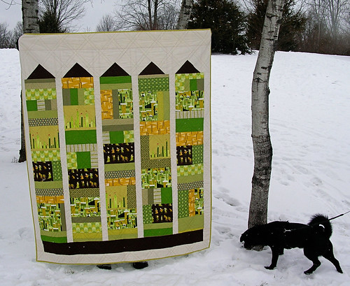 Simon checking out the castle quilt