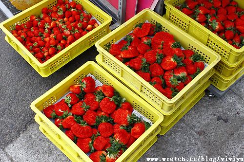 [旅遊.苗栗]大湖酒莊~草莓季來囉 @VIVIYU小世界