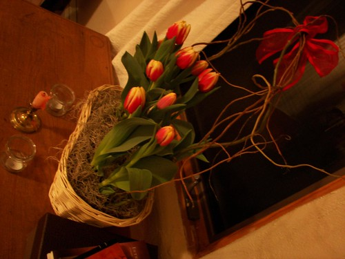 Valentine's Day Tulips!