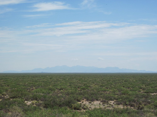Picture On the Road to Columbus, New Mexico