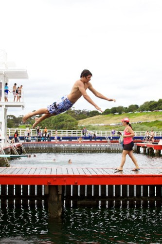 Geelong Diving