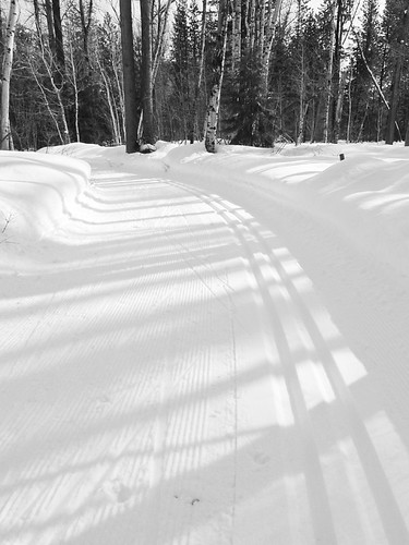 ski trail 0303