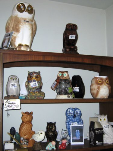 Shelves of owls