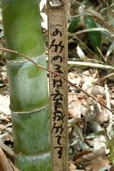 鴨居原市民の森(注意書き?、Kamoihara Community Woods)
