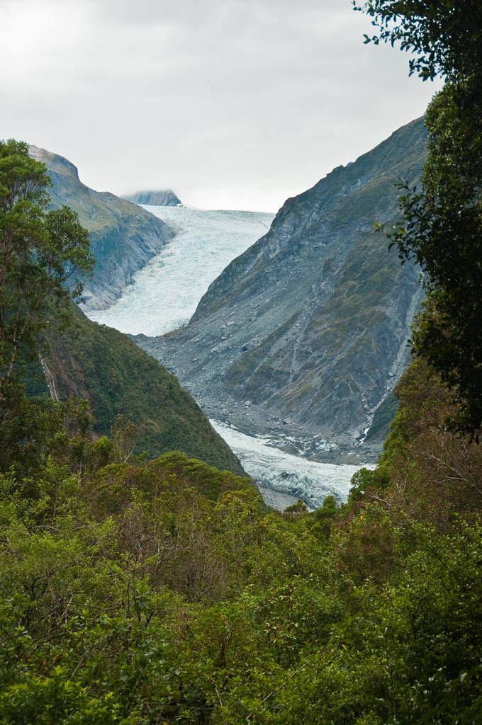 View of the Fox Glacier