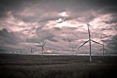 140211_ Whitelee Windfarm #1