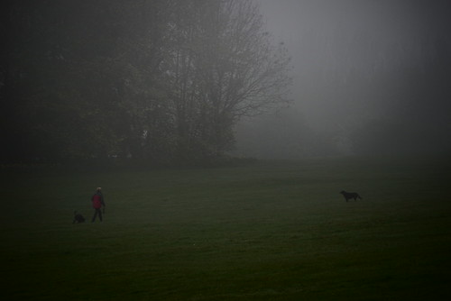 Misty Stuff