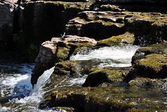 Aysgarth Falls 5