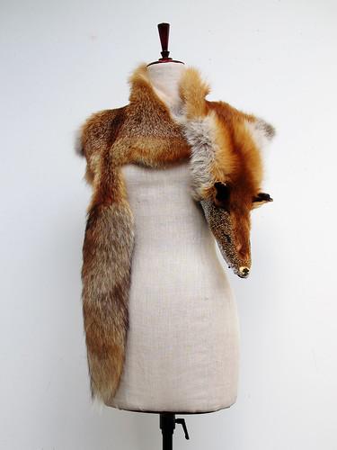 bara baras - fox front