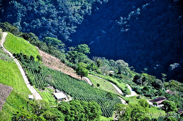 KLR 650 Trip Venezuela 48