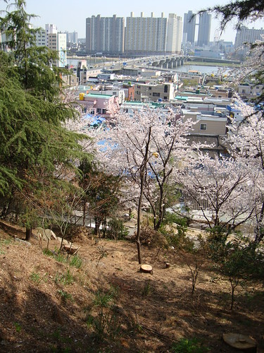 """Ulsan Japanese Castle"" 울산왜성 蔚山倭城"