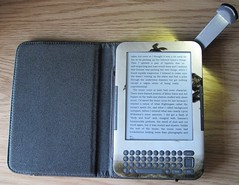 My Kindle with new skin and cover.