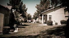 Neighbourhood - IMG_7341