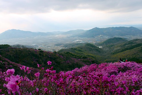 Ganghwa mountainsides