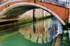 Ponti di Venezia by luciano dionisi (Aiuto Flickr è troppo lento)