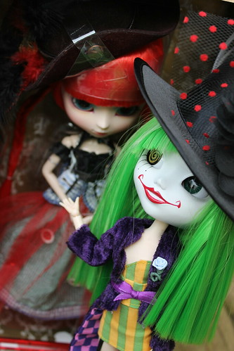 Duela showing off her new friend she met at the animadness meet