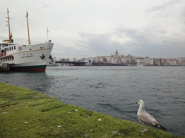 Visita da Torre Galata em Istambul