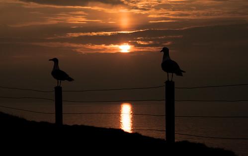 Peel Sunset 2 by jonny.andrews65