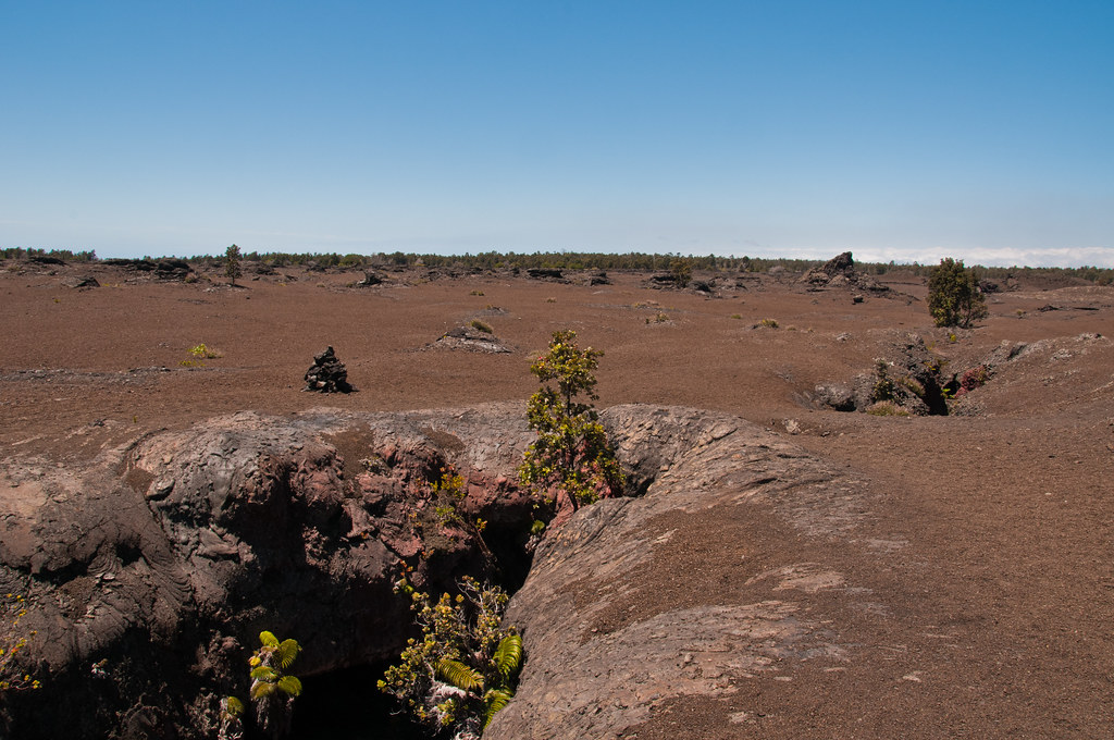 The fissure and associated lava and tephra field