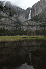 Yosemite Falls reflected