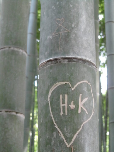 Bamboo love heart