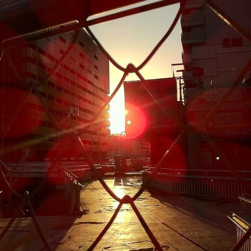 金網越しの朝日。いつもは通れた道なのに…。今日も笑顔で(^o^)ノ < おはよー! #Osaka #Abeno