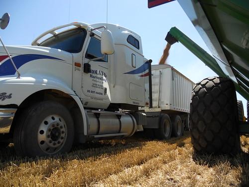 Graincart unloading